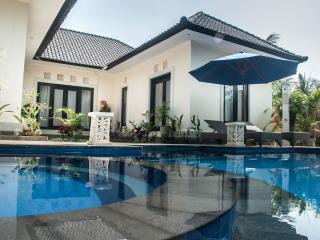amazing Ubud Villa with Jungle view