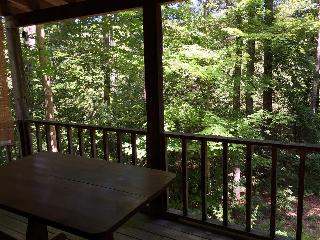 Lady Slipper - Cozy Cabin near Tallulah River, Tallulah Falls