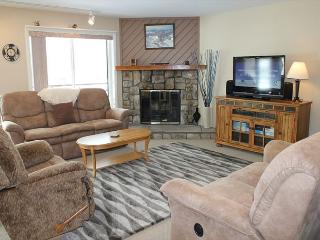 BR202F Condo w/Great Views, Wifi, Fireplace, Clubhouse & Covered Parking, Silverthorne