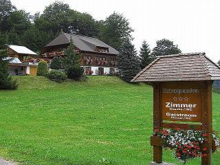 Vacation Apartment in Schonach im Schwarzwald (# 7174) ~ RA63745