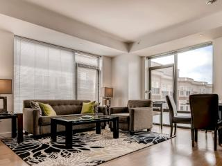 Lux Fully Furnished 1BR Boston Apt.