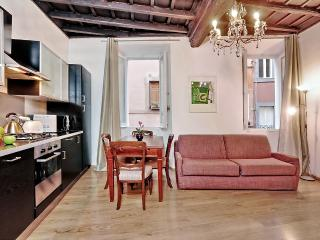 Quite and central apartment close to Palazzo Altemps and Piazza Navona