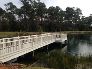 Spoonbill Cove II-Carlton Lake, Naples