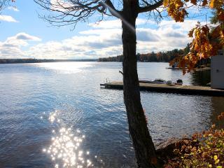 Beautiful Lake Front Cottage - 230' Water Frontage, Bala
