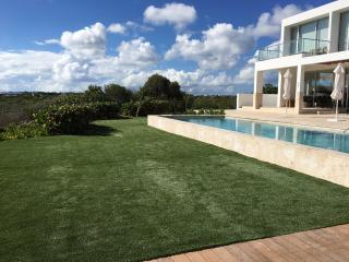 Sleek and modern with new huge pool and lush 'always-green' lawn!