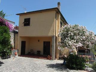 MARGHERITA, Procchio