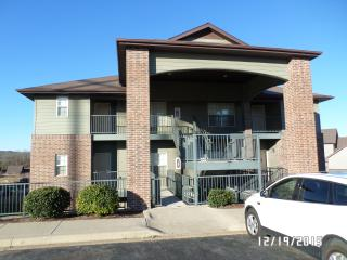 Crook Condo, Branson West