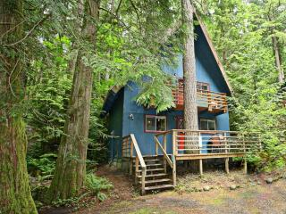 Mt. Baker Twin Tree House 1-hot tub & pet friendly, Glacier