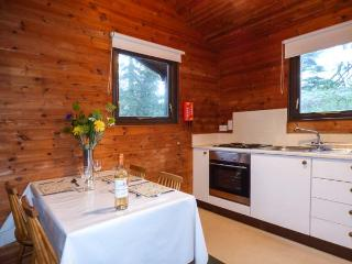 BUTTERMERE detached log cabin, shared grounds, close to Coniston in Greenodd