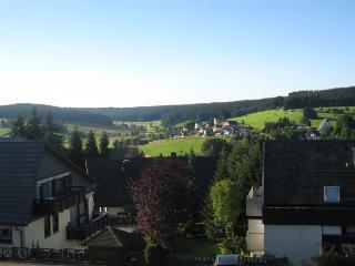 Vacation Apartment in Schönwald (# 7610) ~ RA64012, Triberg