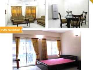 Furnished flat for rent in Bashundhara R/A, Dhaka City