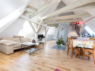 Loft Saint Nicolas, Colmar