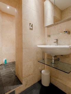 Bedroom 3 en-suite with wet room
