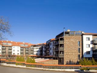 One bedroom apartment. 100 meters from the gondola, Bansko