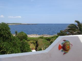 Villa with stunning sea views, Cala'n Bosch