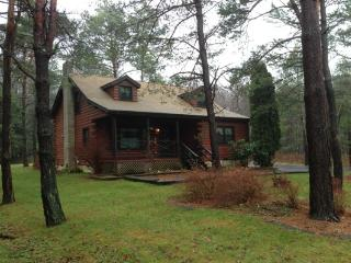 LOVELY Winter Log Home in Amenity filled Towamensing Trails