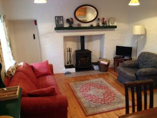 Living room with new wood burning stove