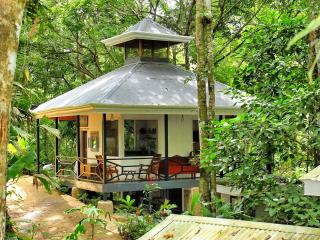 Your Private Suite in the Middle of the Jungle !