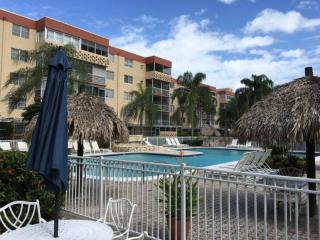 Spacious, Fully Renovated, Furnished 1BD Apartment, Plantation