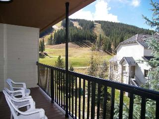 Fox Pine Lodge Condo #317