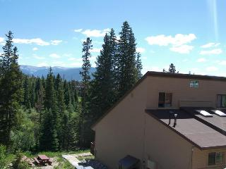 Buffalo Ridge 2 bed Loft, Silverthorne