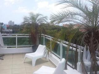 ROOFTOP PENTHOUSE -  EXCELLENT LOCATION - GAZCUE, Santo Domingo