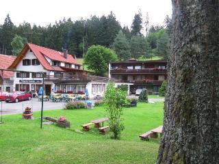 Vacation Apartment in Altensteig (# 7858) ~ RA64283