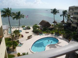 THE PALMS 506, Islamorada