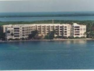 THE PALMS 301, Islamorada