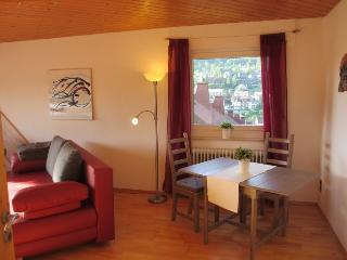Vacation Apartment in Schonach im Schwarzwald (# 7749) ~ RA64172
