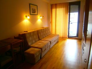 Studio Apartment Boka, Budva