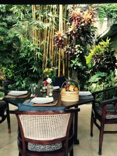 Enjoy our beautiful 50ft. stand of golden bamboo just off the dining room.