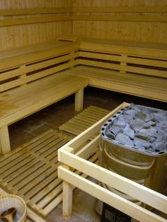 1 of 2 saunas