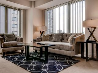 Furnished Luxury 1BR West End Apt., Boston