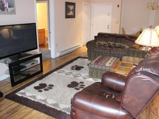 Living Room with 50' LED TV, DVD Player, and Gas Fireplace.