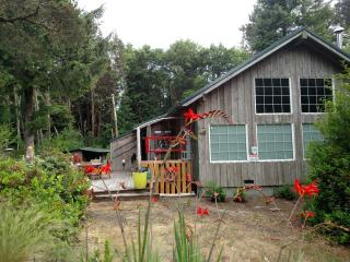 Nice Cabin Nestled in the Woods Close to the Beach, Grayland