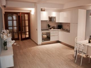 Lovely new big apartment in the heart of Florence