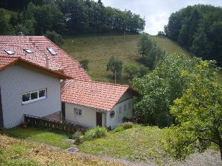Vacation Apartment in Oberharmersbach (# 8275) ~ RA64602