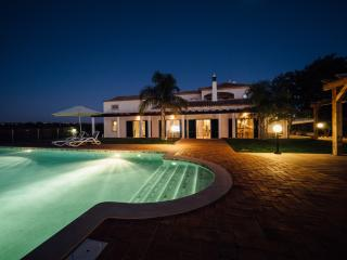 Beautiful Quinta, swimming pool & 3600m2 garden.
