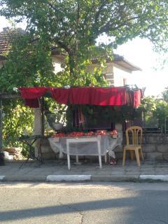 Tomatoes for sale in Merdanya.
