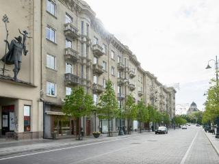 Apartments on Gedimino pr.