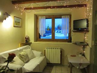 Spacieux et confortable appartement 3 pieces dans maison