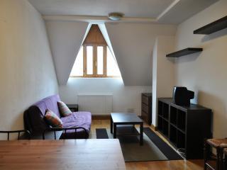 Apartamento de una habitacion en Formigal