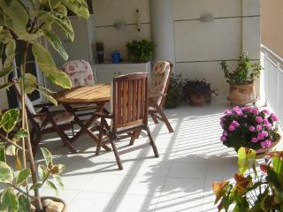 the other part of our terrace