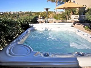 Dana Point Family Home-private hot tub, AC, Wifi