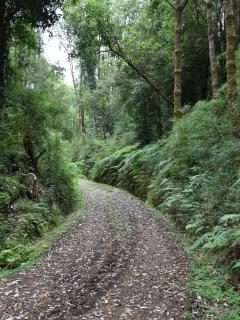 Seis km de caminos interiores, totalmente privados.