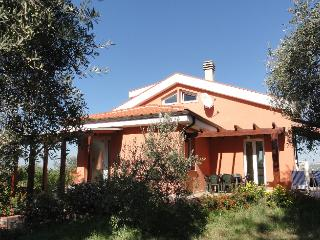 Charming villa with pool in quiet old olive grove, Sassari