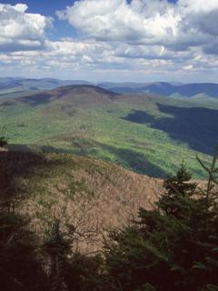 View from Slide Mt. Catskills highest peak trailhead just minutes from Panther Mt Lodge.