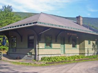 Panther Mt Crater Lodge-Private studio apt.-Catskill Mts