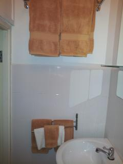 Towel racks in shower with towels.